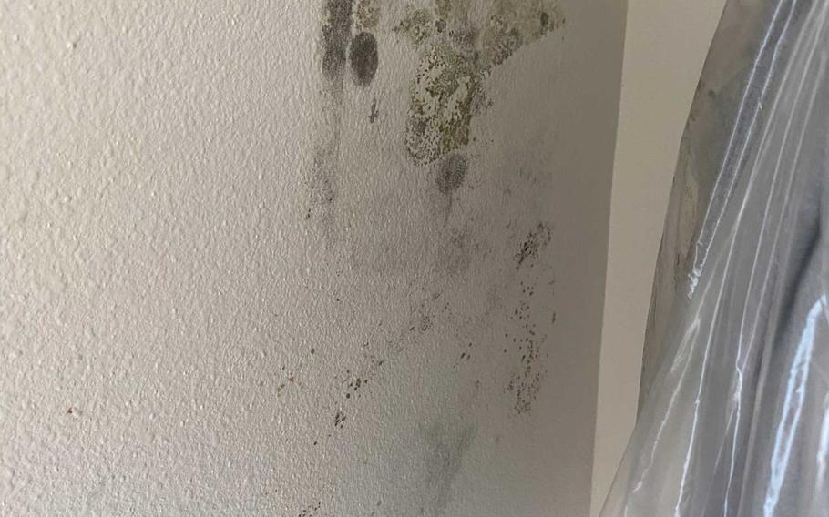 Courtney Hamilton found patches of mold growing last week in an upstairs closet of her home at Fort Hood, Texas, months after she was told the house had been remediated. The Hamiltons are one of nine families to file a lawsuit Monday against private housing company Lendlease because they say their homes had toxic levels of mold due to poor maintenance.