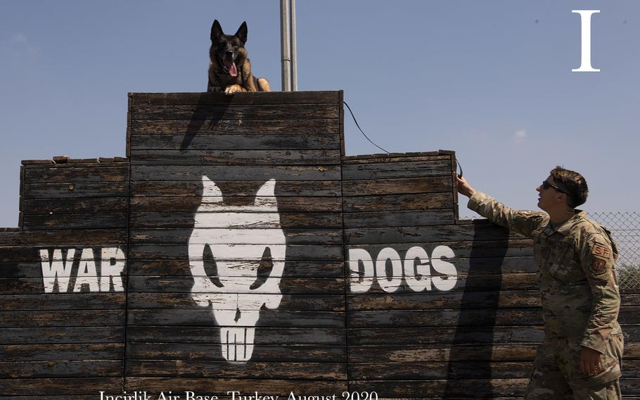 U.S. Air Force Staff Sgt. Rachel Hyde, 39th Security Forces Squadron military working dog handler, practices with MWD Brix on the MWD obstacle training course, Aug. 5, 2020, at Incirlik Air Base, Turkey. Excessive heat or cold conditions can put strain or even injure MWD's, so handlers prioritize their care and work with leadership to ensure their readiness.