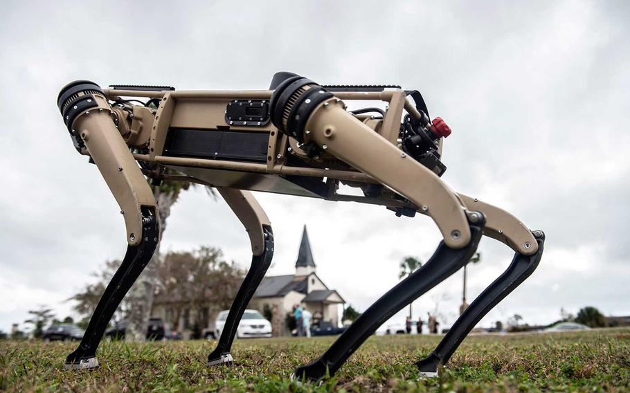A robot dog stands on the grounds of Tyndall Air Force Base, Fla., during a demonstration held Nov. 10, 2020.