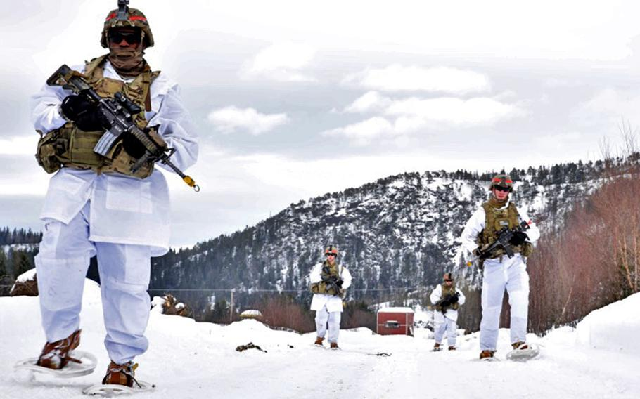Soldiers of the 173rd Airborne Brigade traverse frigid terrain at Exercise Cold Response in Norway in 2016. The Army wants to set up a new Arctic  brigade, Chief of Staff Gen. James C. McConville  said this week.