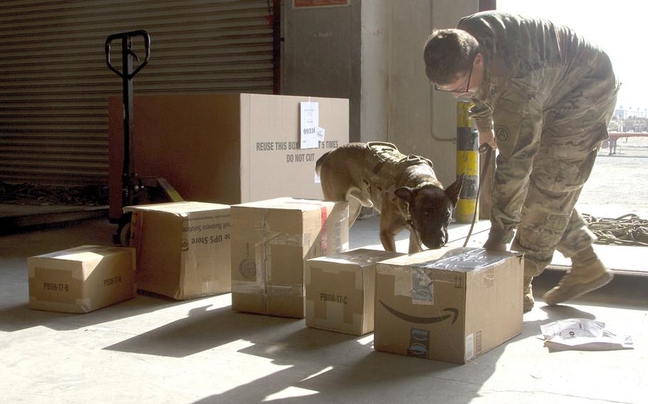 Military working dog Roger sniffs mail for contraband at Joint Military Mail Terminal, Camp Arifjan, Kuwait, Dec. 1, 2017.