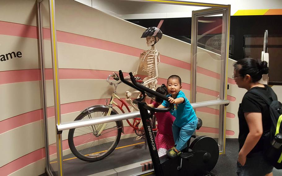 """A visitor at the Hawaii Children's Discovery Center in Honolulu pedals beside a skeletal workout partner at one of the """"Fantastic You"""" interactive displays that help kids understand how the human body works."""