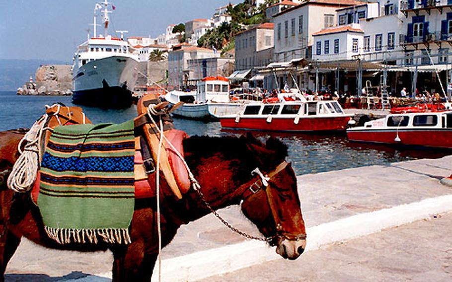 Since there are no cars on the Greek island of Hydra, donkeys await to fill your traveling needs.