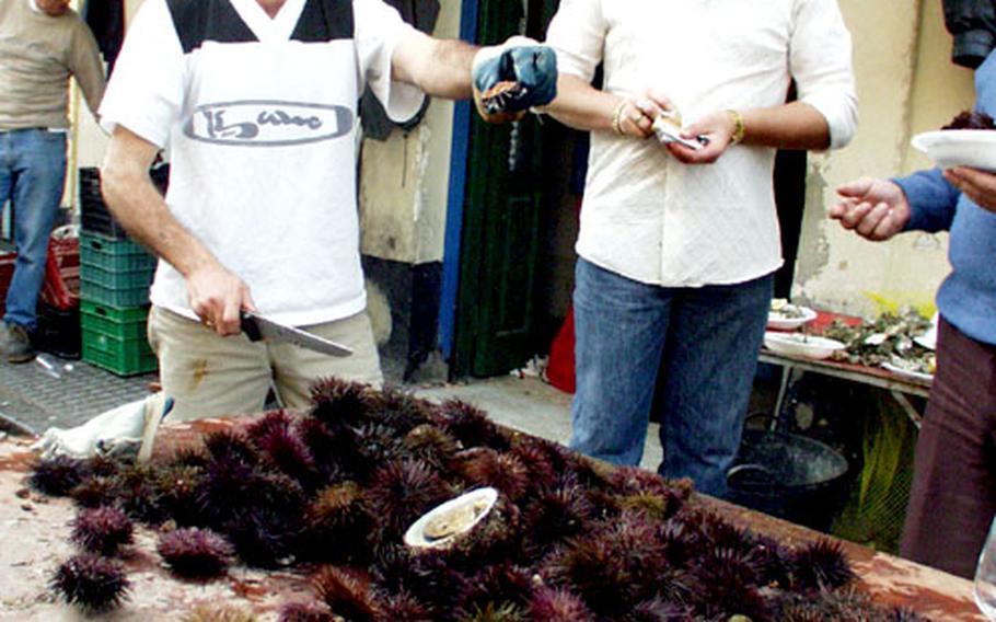 Fishermen hawk sea urchins in Cádiz, Spain.