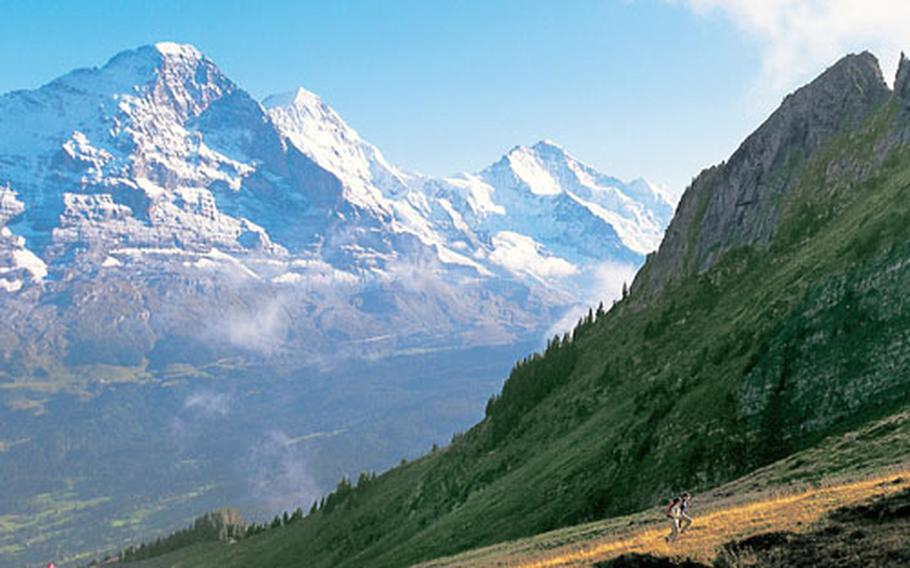 Hikers ascend the Bussalp, a mountain near the popular ski resort at Grindelwald. In the back are the peaks of the Eiger, Mönch and Jungfrau mountains in the Bernese highlands.