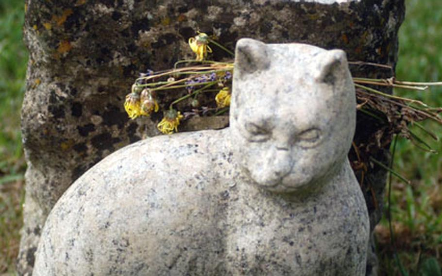 One of the many graves at St. Mary's is that of Tiddles, the church cat, who died in 1980.