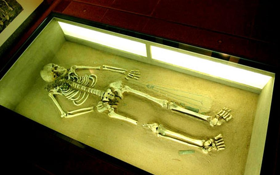 One of Ladenburg's oldest residents — more than 10,000 years and counting — rests in peace at the city's archaeological museum.