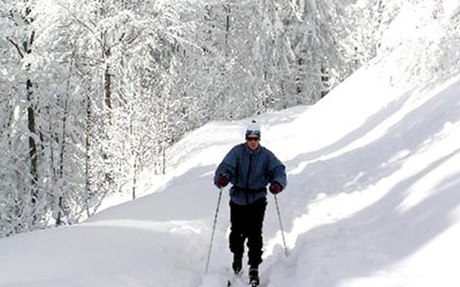 A cross country skier on an uncrowded trail at Cervenohorské sedlo, which boasts miles of tracks leading through the mountains.
