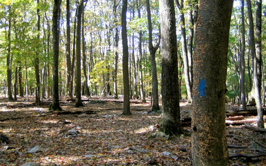 A hush in the forest of Catoctin Mountain Park, which offers 25 miles of hiking trails all year, is broken only by the sound of leaves crunching underfoot.