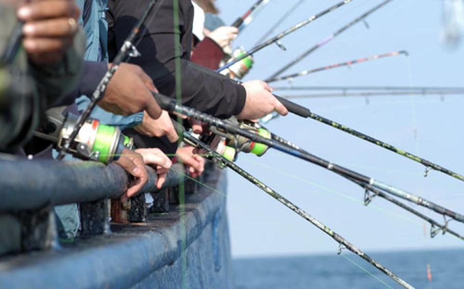 Fishermen raise and lower their rods to entice fish into taking their lures during a fishing trip aboard the M.S. Maria on the North Sea.