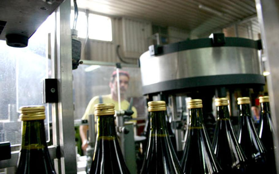 Wine is bottled on site at Italy's Cantina Sociale di Solopaca. Grape-harvesting season extends from now through mid-October, and visitors can make reservations for tours at the Cantina Sociale to see how the grapes are turned into wine.