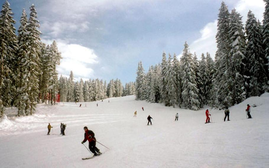 Skiing through the pine forests at Bansko is a delight.