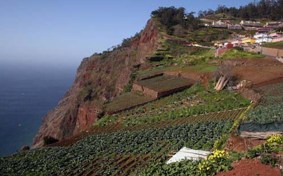 For the past 600 years, agriculture and horticulture have played an important role in the economy of the Ribeira Brava district on Madiera's southern coast is . Both depend on water brought down from the mountains by the network of levada channels.