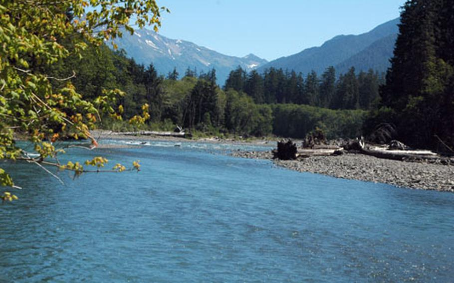Flowing from glaciers high in the mountains, the Hoh River is just one of the many sights visitors can experience in Olympic National Park.