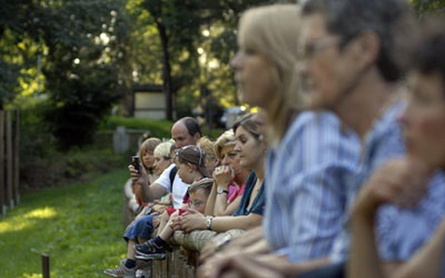A crowd gathers to watch Freund interacting with the wolves. People are welcome to stroll past the enclosures on a network of trails during the park's opening hours, between sunup and sundown
