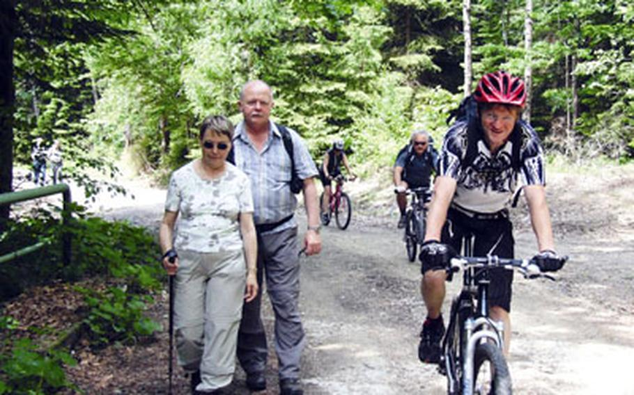 There are miles of cycling and hiking paths in the Bavarian Forest National Park.