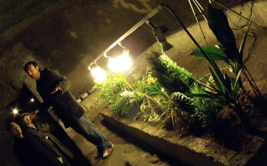 An experimental botanical garden, started in Naples' underground about 15 years ago, requires no care other than the grow lamps. With 80 percent humidity in the city's bowels, the plants need no watering.