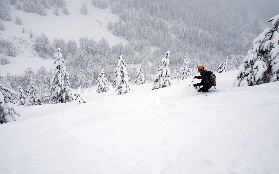 Skiing the trees in Valbona, Albania.