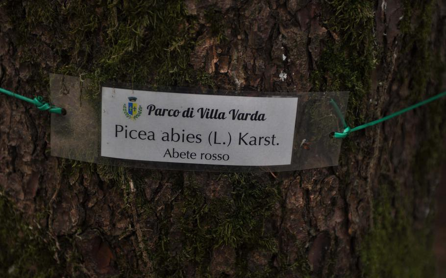 Those interested in figuring out what some of the trees around them are in Parco di Villa Varda in Italy are in luck - as long as they speak Latin or Italian.