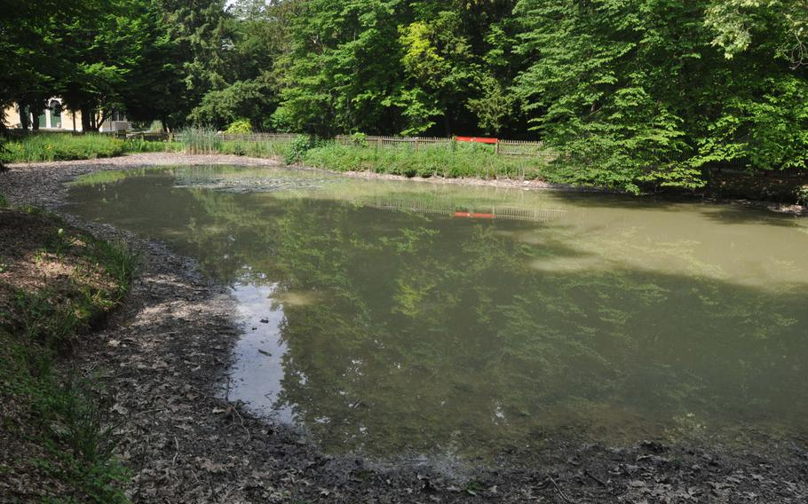 The pond that's close to the tower at Parco di Villa Varda is getting a makeover of sorts. It's been drained to low levels, but still sports a turtle or two, while a new bridge is built around the southern end (to the right of this view).