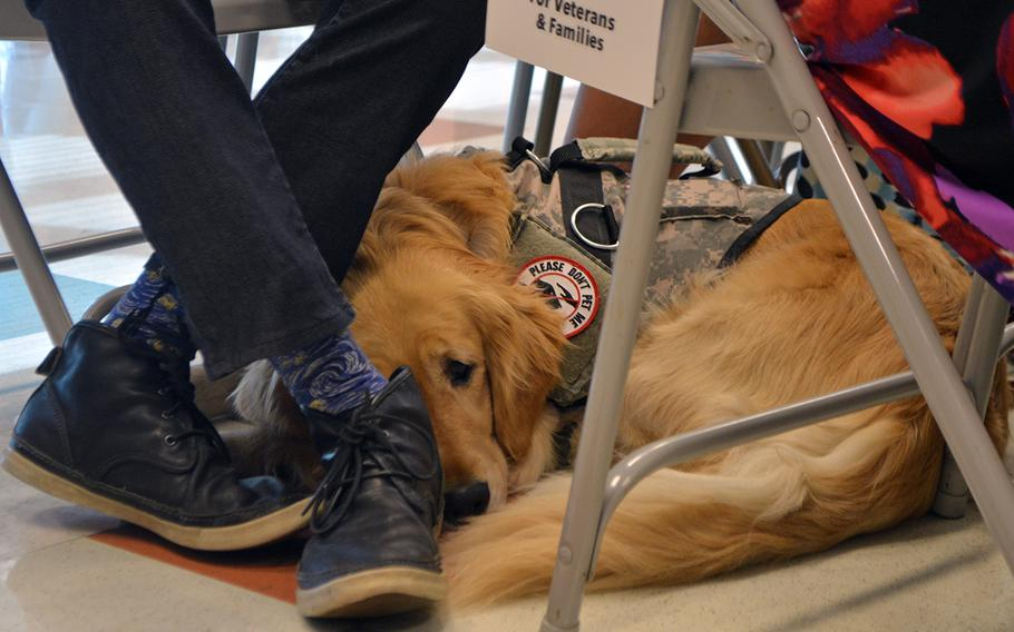 A service dog, newly graduated from the Warrior Canine Connection, rests under his owners feet while the rest of his class graduates on Oct. 7, 2017.